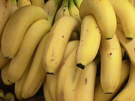Megfeleltek az előírásoknak a Nébih által ellenőrzött banánok