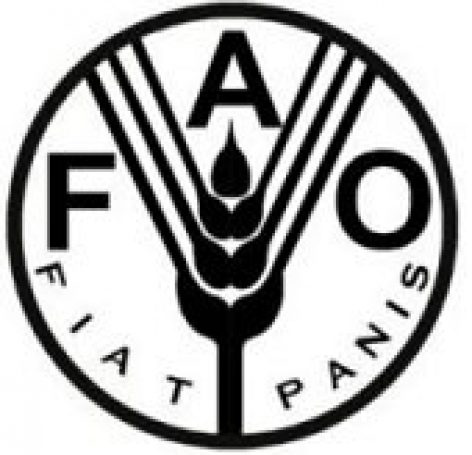 FAO: Food and agriculture in the 2030 Agenda for Sustainable Development