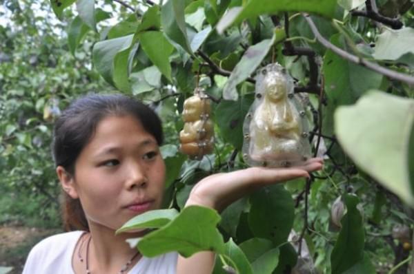Ma Buddha, holnap Michelle Wild - A nap kepe  3