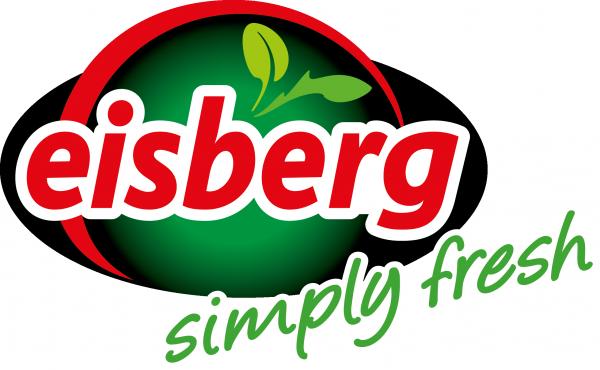 Eisberg_Logo_media