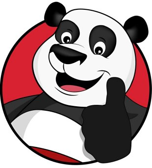 Panda_foto