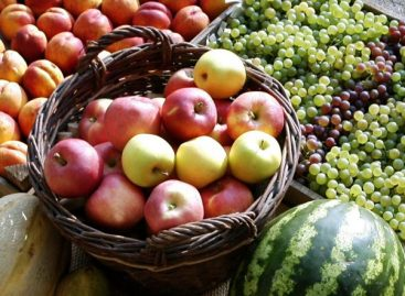 FruitVeB: kedvezett a veteményeseknek és a gyümölcsösöknek a hétvégi csapadék