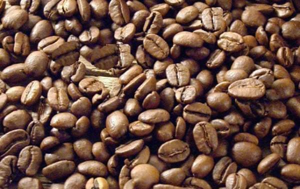 kave-uj
