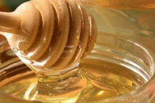 Agrárminiszter: szja-mentes lesz a méhészeti termékek értékesítése