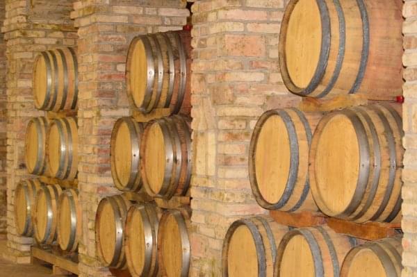 Magazin Arisztokratikus borok keszitoi I 3