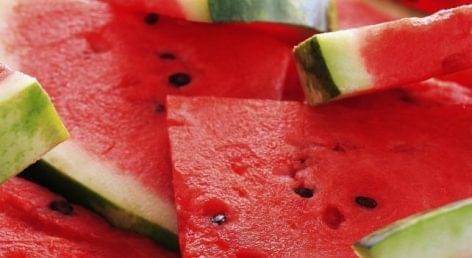 Görögdinnye: rendszeresen egyeztet a Kamara és az Auchan