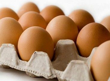 Tovább esett a tojás termelői ára
