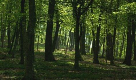 Turisztikai fejlesztések kezdődnek Borsodban