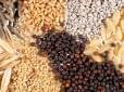 Seed sales generate 100 billion HUF turnover