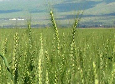 Czerván: fordulat történt a mezőgazdaság finanszírozásában