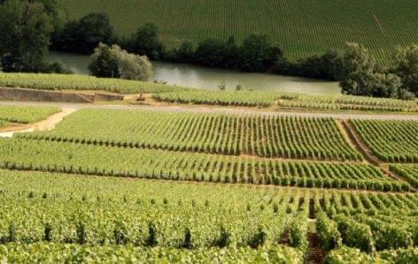 Burgundia és Champagne borvidékei is felkerültek a listára