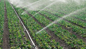 Climate change must be coupled with cost-effective water management
