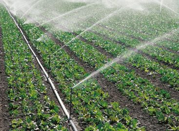 Öntözési vízigény-felmérést indított a Nemzeti Agrárgazdasági Kamara