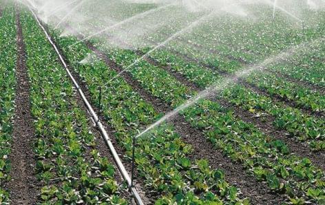 AM: a mezőgazdaságnak fel kell készülnie a klímaváltozás kihívásaira