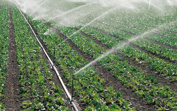 development of national irrigation Irrigation in brazil has traditionally been responsible for irrigation development a national irrigation program was created in 1986 with two.