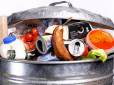 A better quality diet results in higher levels of food waste