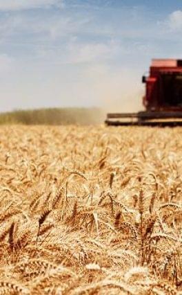 Mezőgazdasági összeírást tart a KSH