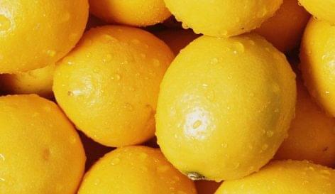 Jövőre megépül Szolnokon a citromsavgyár