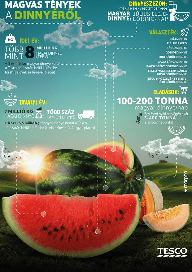 160718_Tesco_Infografika_Magvas_tenyek_a_dinnyerol