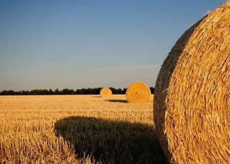 V4 országok: egyenlően támogassa a KAP-reform a gazdálkodókat