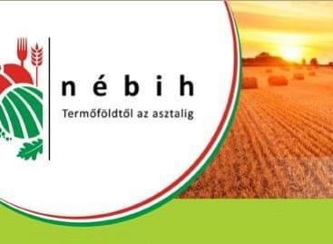 Intelligens élelmiszerlánc-biztonsági elemző rendszert épített ki a Nébih