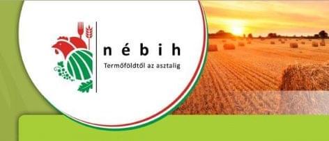 Sikeres a Nébih komplex oktatási programja