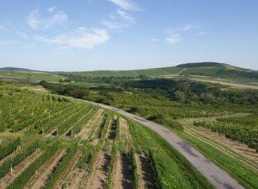 Tokaj-Hegyalját és a zempléni térséget 150 milliárd forintból fejlesztik