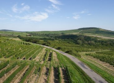 Tokaj-Hegyalja and the Zemplén region will be developed from 150 billion HUF