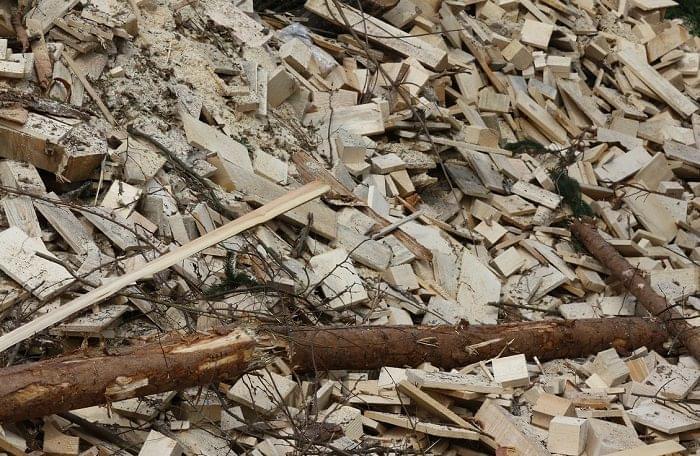 biomassza-fa