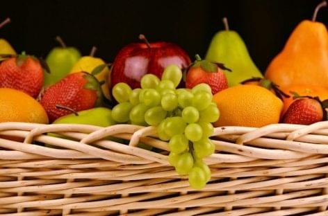 Nagy István: a legújabb technológiák nélkül nem lehet sikeres a zöldség-gyümölcs ágazat