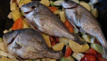 Mégsem lehetne haszonbérbe adni az önkormányzati halgazdálkodási jogot