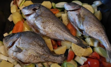 Freshwater fish farmers continue to count on EU funding