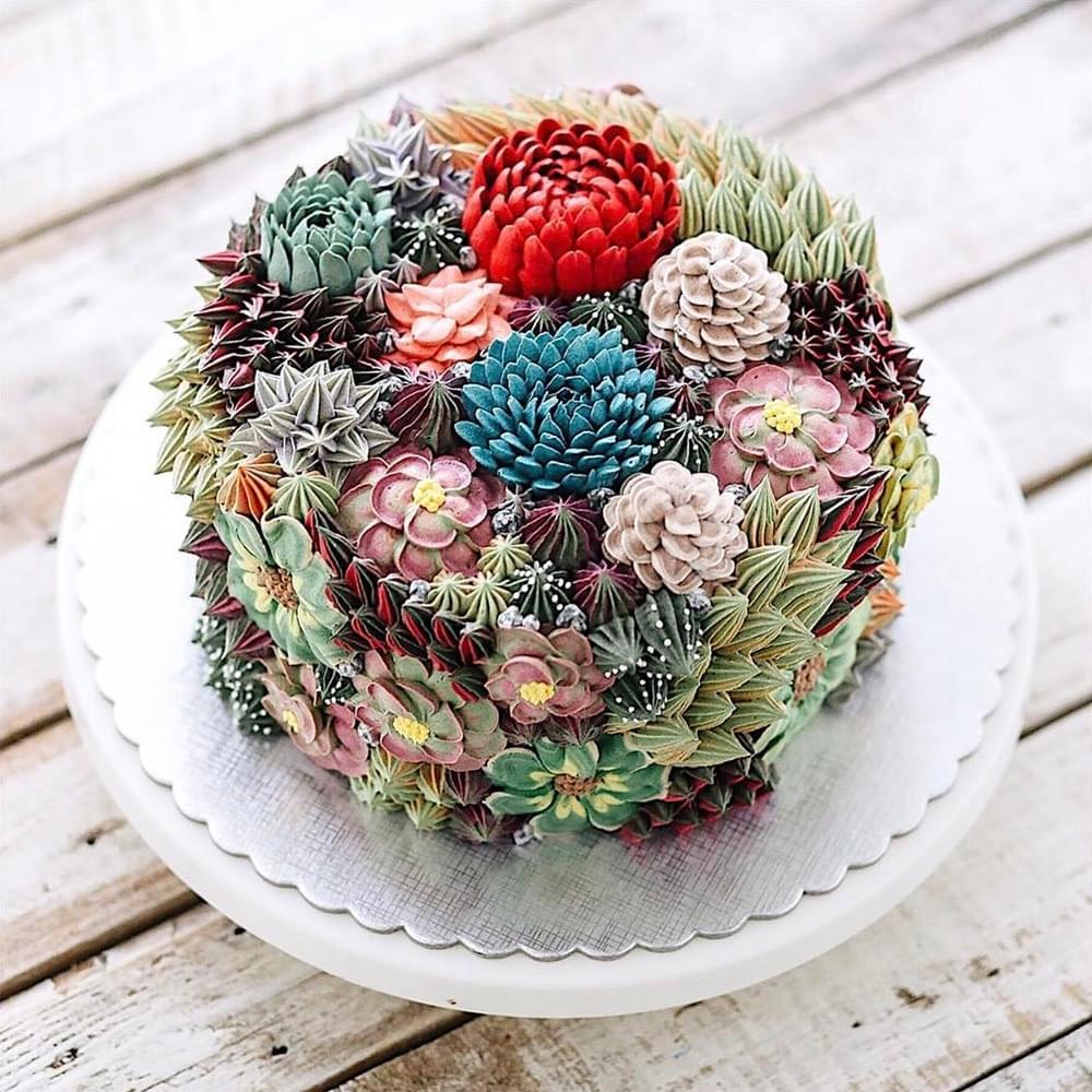 A kaktusz viraga - A nap kepe 1
