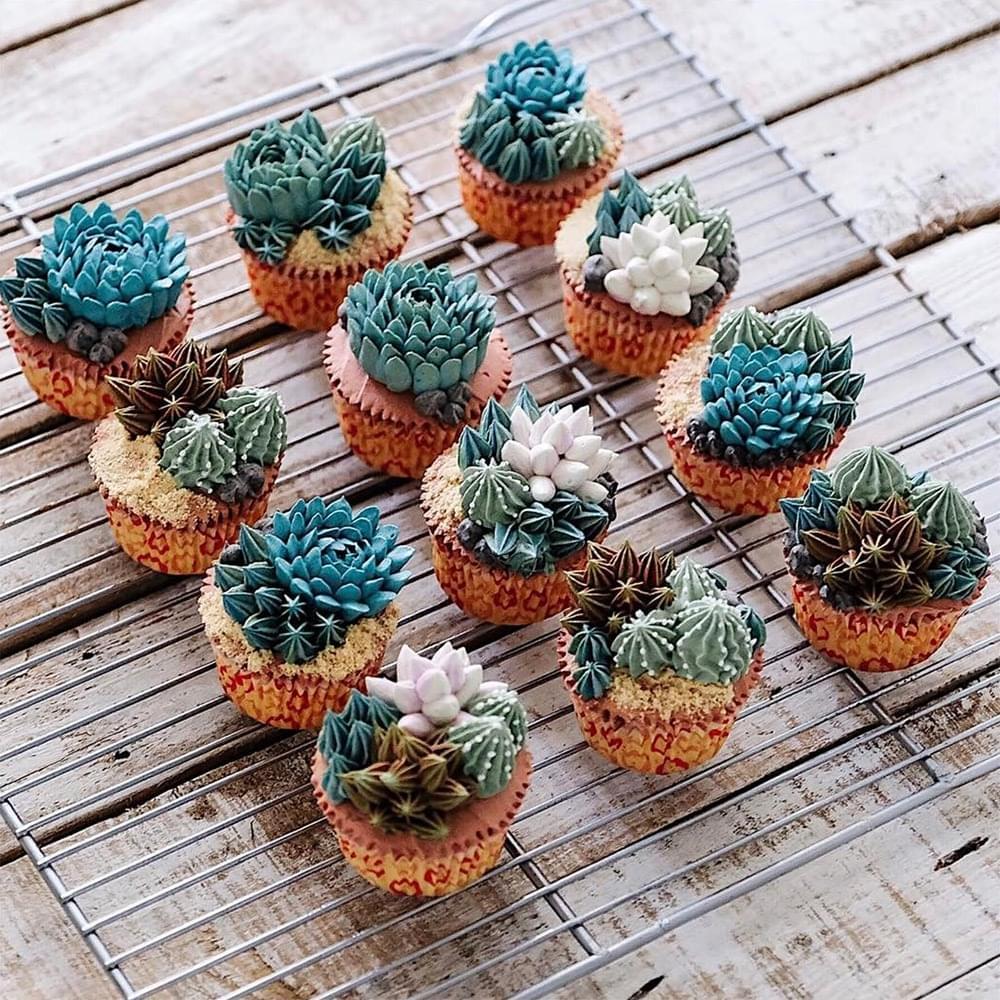 A kaktusz viraga - A nap kepe 4