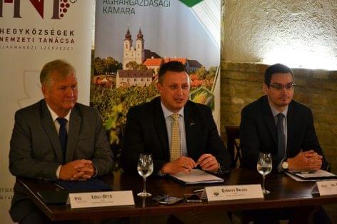 Együttműködésben a magyar szőlészeti-borászati ágazat erősítéséért