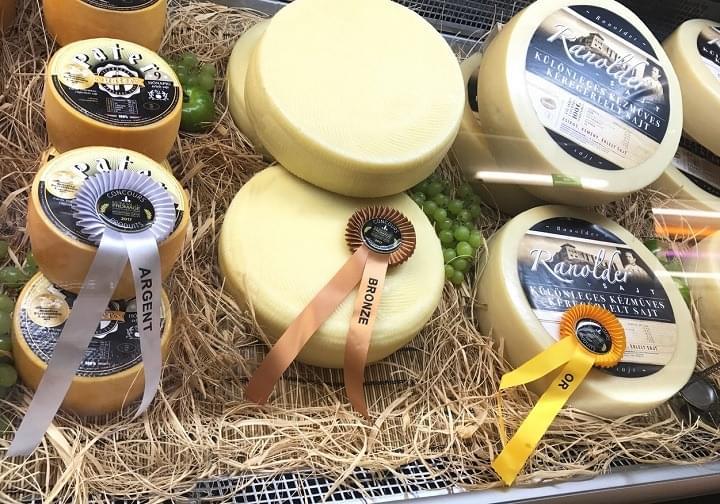 gyoztes sajtok