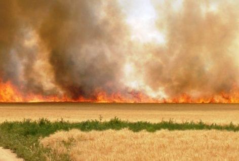 Pusztító tüzek a mezőgazdaságban