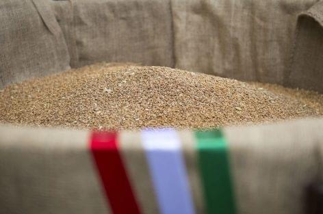 Magosz: idén több mint 600 tonna búzaadományra számítanak a Magyarok Kenyere programban