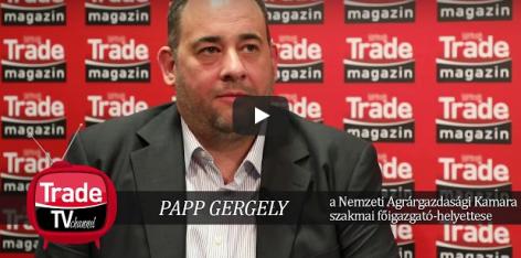 Business Days 2017 interjú – Papp Gergely