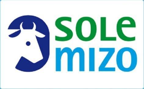 Állami támogatással fejlesztette három telephelyét a Sole-Mizo Zrt.