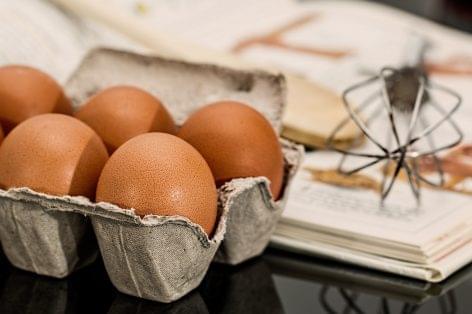 Nagyot csökkent a tojásár
