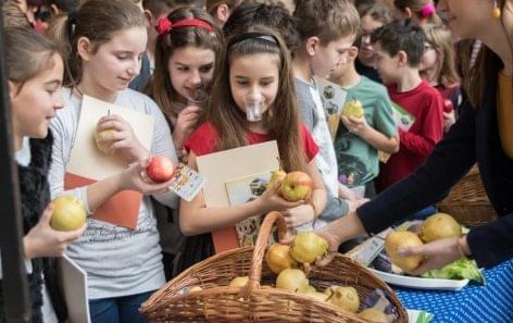 Háromezerötszáz iskolás ismerkedett az egészséges táplálkozás alapjaival