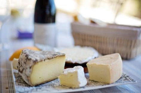 Magazin: Szépen kerekedik a sajtpiac