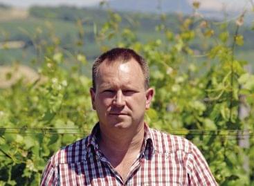 Évek óta vártuk az élre, végre elért a csúcsra: Koch Csaba lett az év borásza!