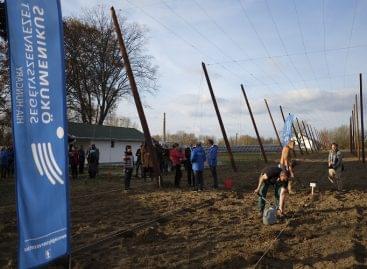 Hátrányos helyzetű családokon segít a magyar komló