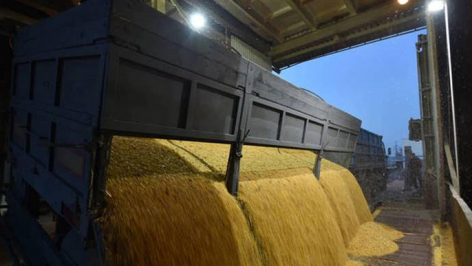 FAO: Declining international prices to ease food import burden for poorest countries