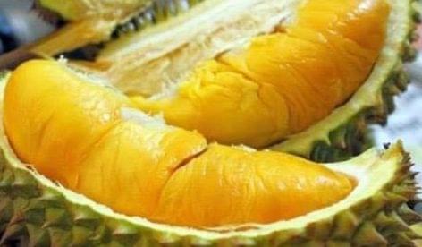 Elképesztő áron kelt el néhány darab a büdös gyümölcsből