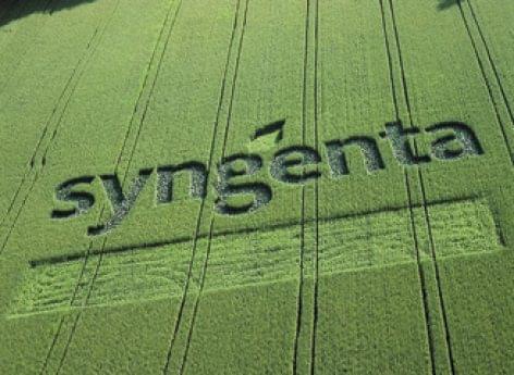 Syngenta: segítünk a termelőknek, együtt küzdünk a klímaváltozás hatásaival