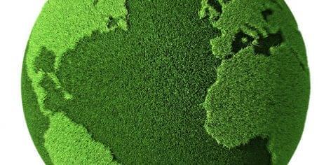 Magyar Biokultúra Szövetség: az ökológiai gazdálkodás és a bio üzemanyag-termelés szöges ellentétben állnak