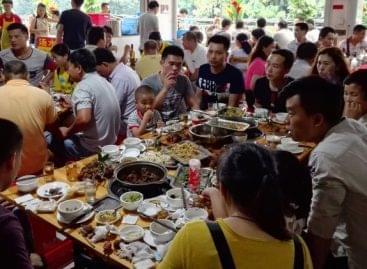 """Hús, hal, hüllő, avagy a kínai konyha """"elméleti"""" alapjai"""